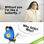 Tahir Shah Viral - Eye to eye 8