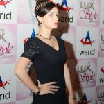 Celebrity at LuxStyle Awards 2013 Red Carpet 2