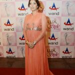 Vaneeza Ahmad Lux awards red carpet