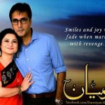 Darmiyan ARY Digital Drama Serial 4