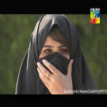 Aseer Zadi Hum TV Drama Serial 3