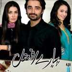 Pyare Afzal ARY Digital Drama Serial 3