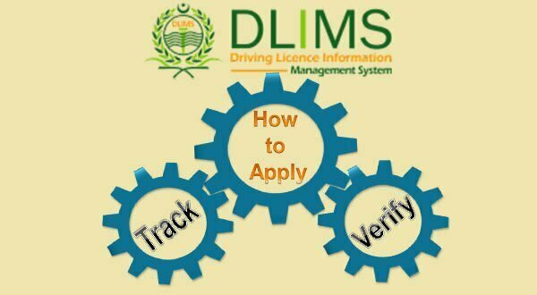 What is DLIMS Punjab, How to Track and Verify Driving