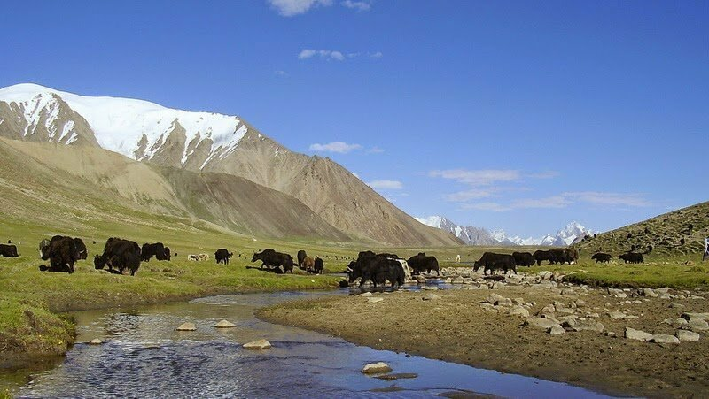 Hunderab Shandur National Park